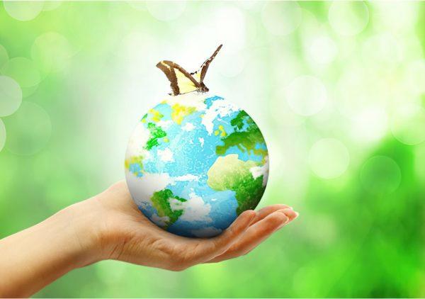 Bild Sustainability Session standard scale 2 00x