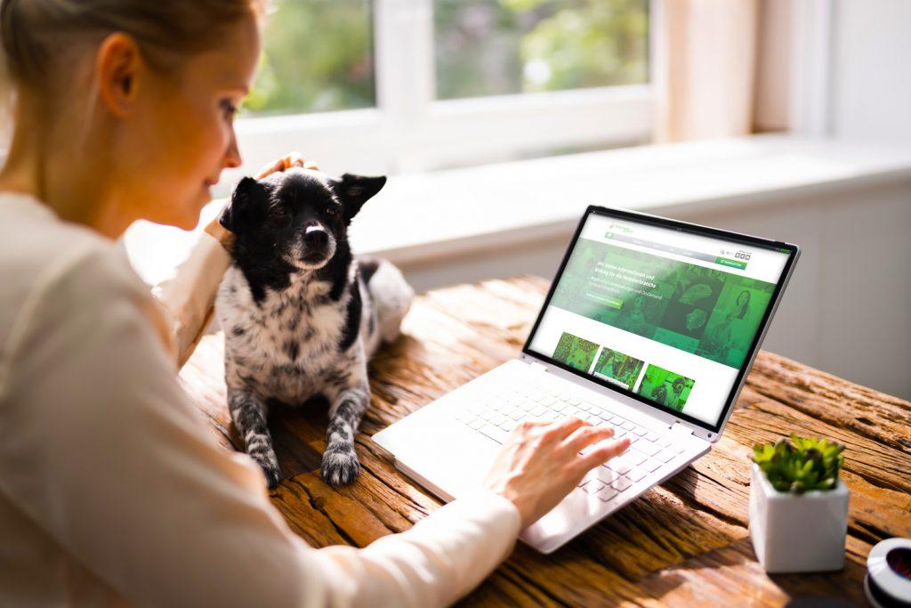 homeImage laptop