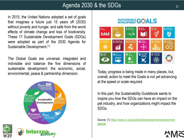 2021 10 11 16 26 11 Sustainability Guidebook.pdf Persoenlich – Microsoft Edge